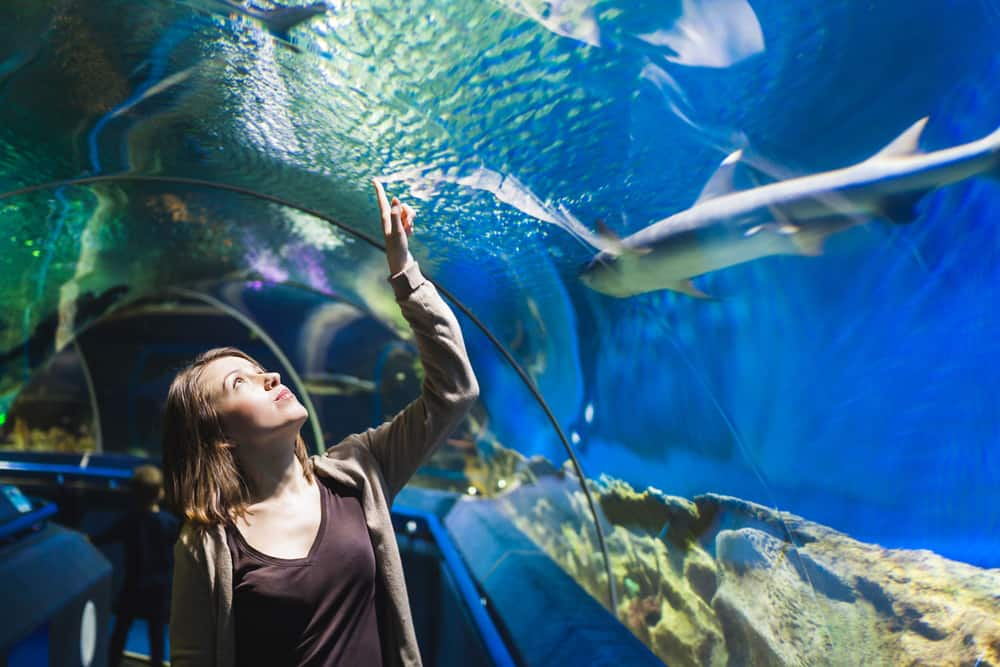 Girl walking through tunnel in aquarium.