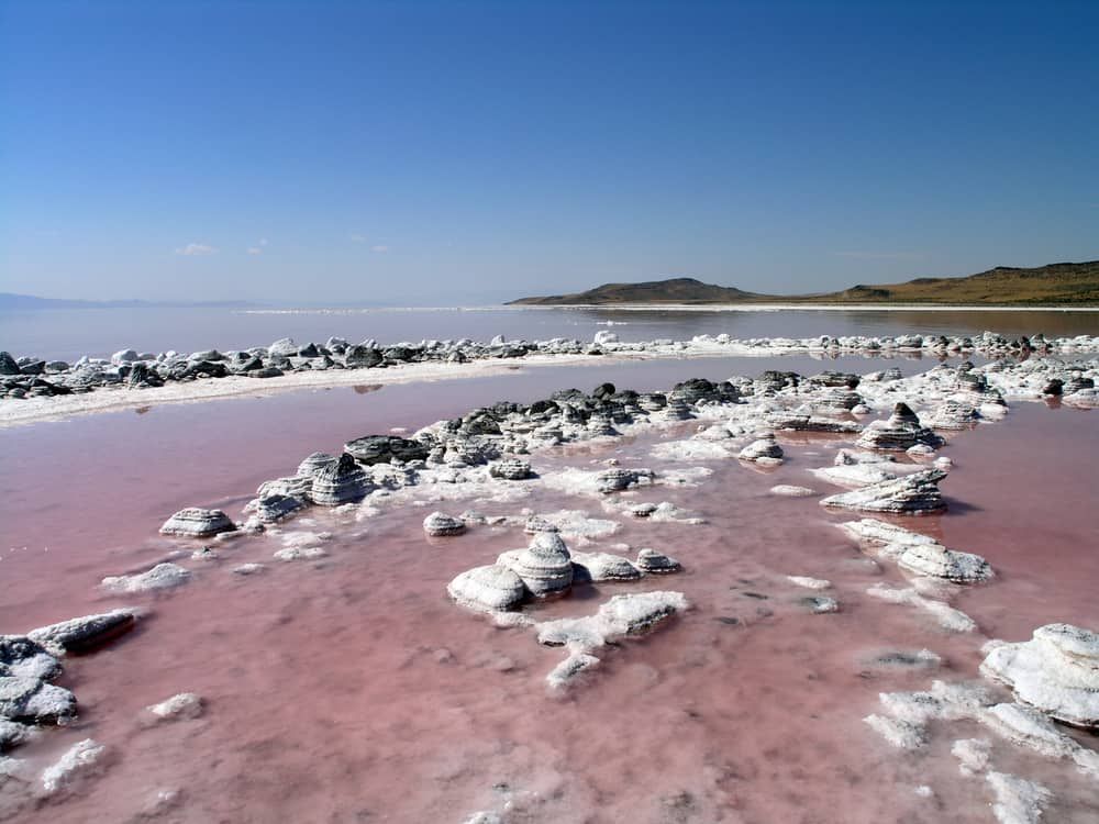 Shore of Great Salt Lake with pink water