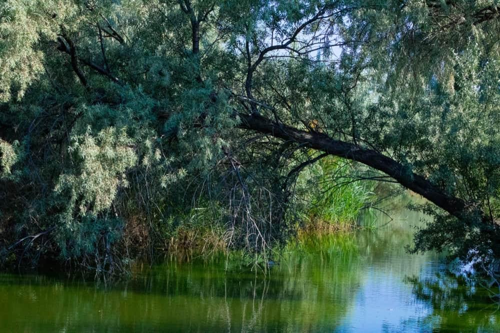 Jordan River in Taylorsville, UT
